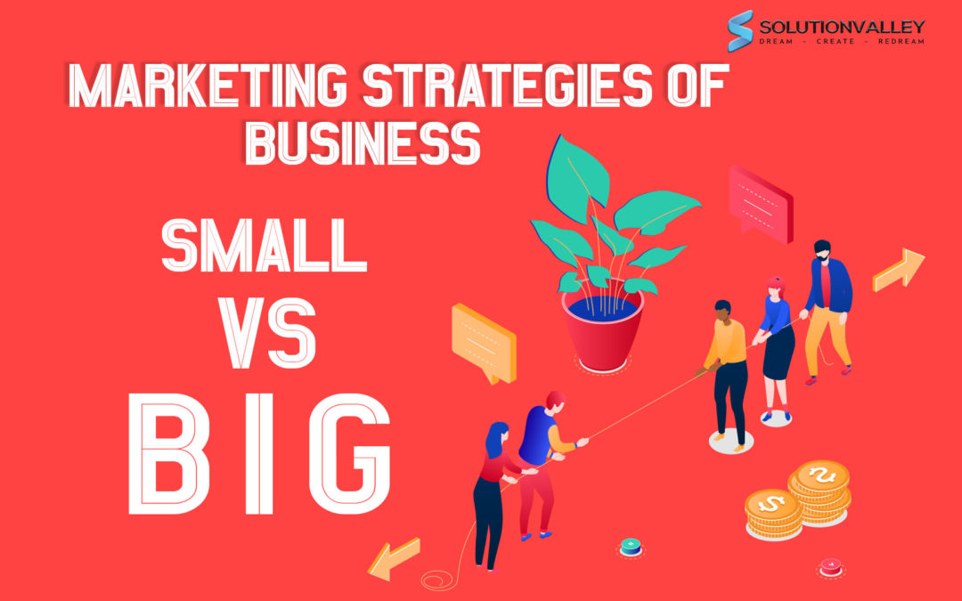 Marketing Strategies of a Business – Small Vs Big